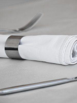 Tableware: Steel Utensil and Napkin Ring. Toned shot